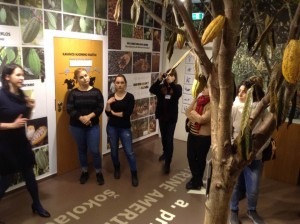 Guided tour in chocolate museum