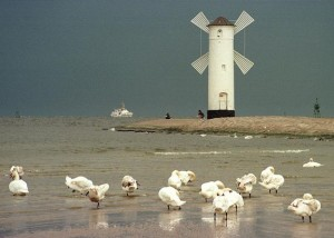 molo-morze-latarnia-morska-mewa-mewy-plaza-baltyk 22733023